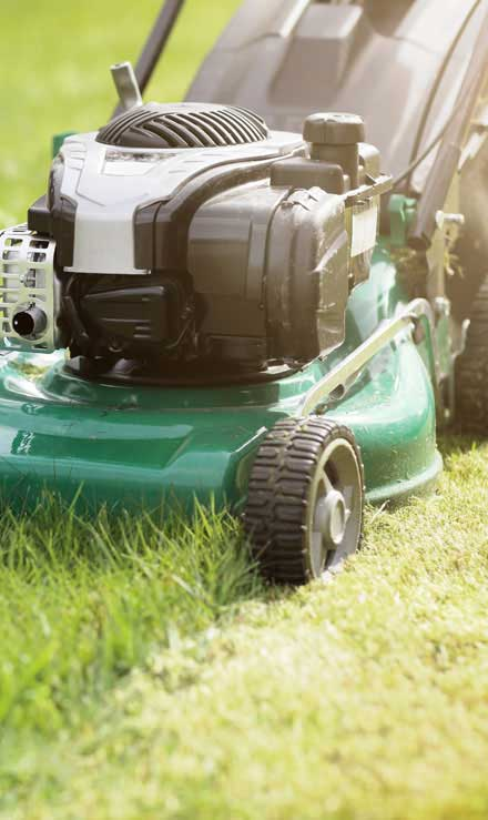 Green Dot Landscapes LLC Residential Lawn Mowing